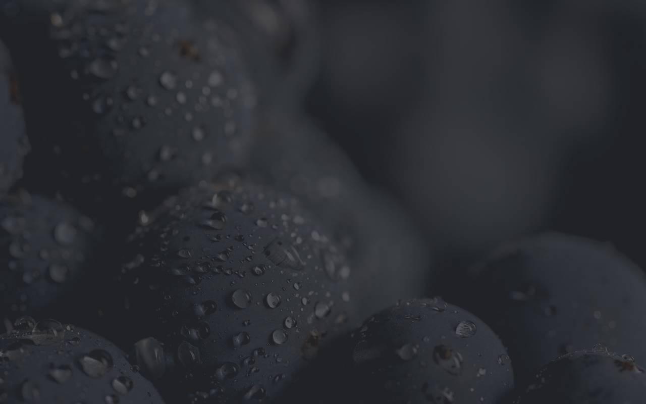 Raisins - maison d'hôte de charme luberon