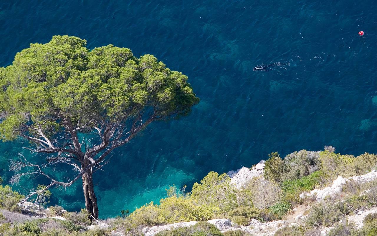 Vue sur la mer - maison d'hôte de chrame provence