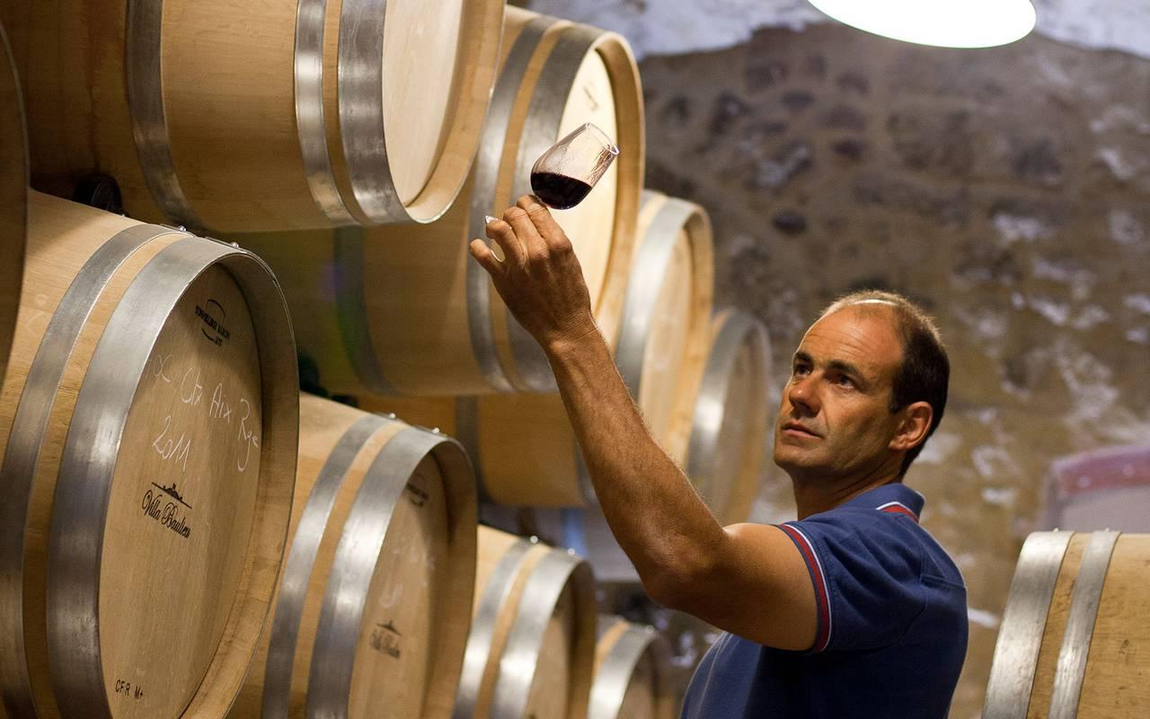vigneron - vignoble provence