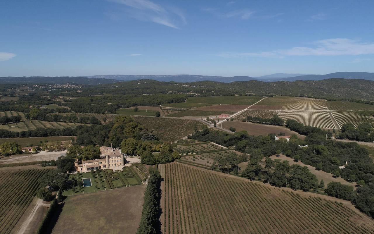 Domaine viticole - vignoble Provence